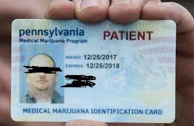 "Got Crohner ""i The Diaries Obtain Marijuana Ticket"" How Medical To Card Golden A Id –"