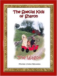 Welcome to the special kids book series books by phyllis yohn rhodes,