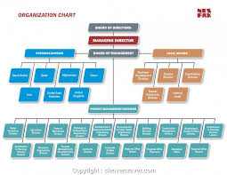 Business Development Manager Organizational Chart Top Business Development Manager Business Development