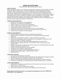 Net Developer Resume Sample Csharp Dot Net Developer Resume Examples Fresh Ssiseloper Sample 8