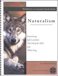 essay on naturalism