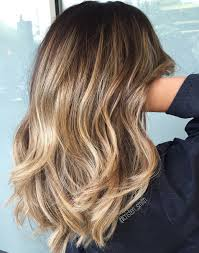 Light Brown Roots Dark Brown Hair 50 Hottest Balayage Hair Ideas To Try In 2020 Hair Adviser