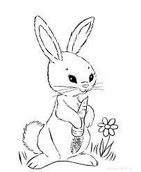 Coloring Pages Bunnies Bunnies Coloring Pages Free Rabbit Coloring