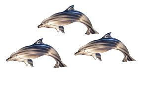 on dolphin wall art metal with delighted dolphins wall art sculpture set of 3