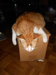 Cat In A Bread Box Classy 32 Best Art Objects Images On Pinterest Ceramic Art Ceramics And