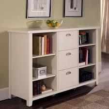 Bookshelf Filing Cabinet Bookcase Filing Cabinet Combo Home Design Vax Home Design Vax