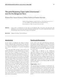 (PDF) The pink flowering Crepis rubra (Asteraceae) - new for the ...