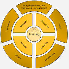 Training Needs Assessment - Equinox Advisory
