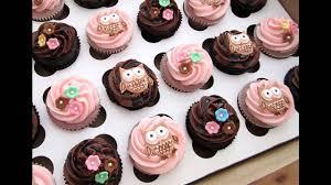 Pink Owl Baby Shower Girl Owl DecorationsOwl Baby Shower Decor