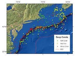 Ecology Of The Northeast U S Continental Shelf Deep