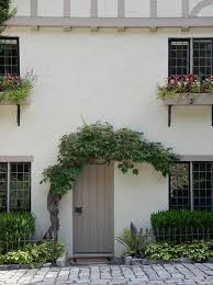 gray plank front door under twisted tree
