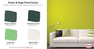 shades of cream color paint fresh green sage paint colors photograph