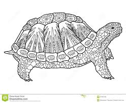 Small Picture Turtle Coloring Book For Adults Vector Stock Vector Image 67663799