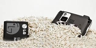 Resultado de imagem para celular no arroz