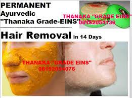 ayurvedic thanaka powder grade groz and kusumba kusuma oil natural hair removal permanent upper lip chin 09066368421