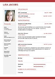 Cv Maken In 3 Stappen Je Curriculum Vitae Downloaden Cv Wizard
