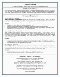 39 Awesome Nursing Student Resume Clinical Experience All About Resume