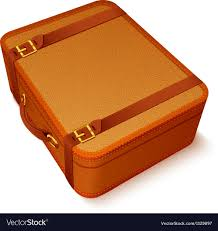 vintage leather suitcase vector image