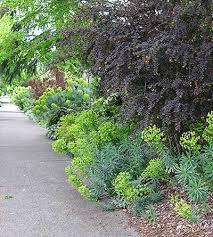 Small Picture Craftsman Garden Design Craftsman Garden Captivating Design Ideas