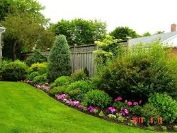 Small Picture Best 25 Backyard landscaping privacy ideas on Pinterest Privacy