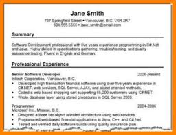 Resume Professional Summary Examples Resume