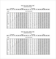 11 Bmi Chart Templates Doc Excel Pdf Free Premium