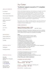 Technical Support Executive Cv Sample How To Write A Eye
