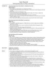 Head Business Development Resume Samples Velvet Jobs