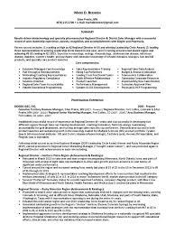Elegant And Professional Resume Resume Tips Format Professional