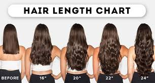 Hair Length Chart Weave Straight Hair Length Chart What You Dont Know May Shock You Lewigs