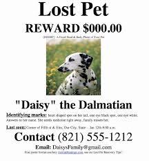 50 Beautiful Lost Dog Flyer Examples Speak2net Com