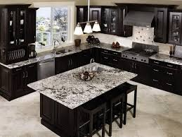 Dark Kitchen Cabinets With Light Granite Impressive 48 Beautiful Kitchens With Dark Kitchen Cabinets Our First Home