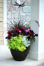 patio patio planter ideas planters outdoor flower flowers best pots on potted plants and