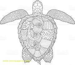 Fresh Cute Sea Turtle Coloring Pages C Trademe