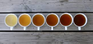 Green Tea Caffeine Vs Coffee Chart Caffeine Questions How Much Caffeine Is In Tea Choice