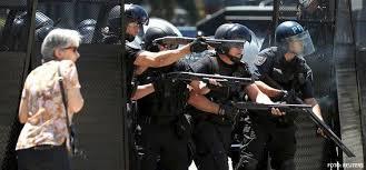 Resultado de imagen para gendarmes argentinos gas pimienta