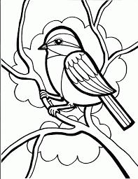 sure fire birds coloring book bird pages bonnieleepanda