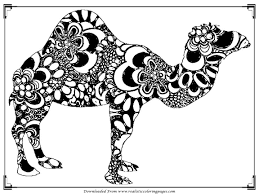 Small Picture Printable Camel Coloring Pages For Adult Realistic Coloring Pages