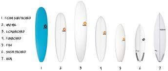 Mini Mal Board Size Chart Types Of Surfboards Surfing Things Explained