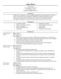 Good Resumes Examples Cool Resume Summary Examples Communication Feat An Example Of A Good
