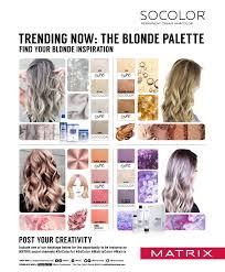 Matrix Hair Color Chart U2538500 Sc Blonde20binder V9r 1