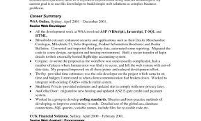 Charming Resume Plural Form Pictures Inspiration Entry Level