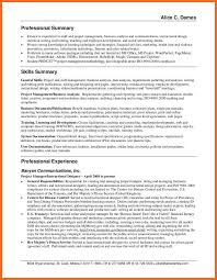 Gallery Of Summary Example For Resume