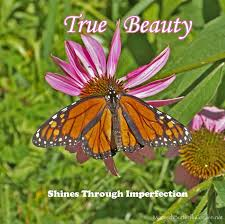 Butterfly Beauty Quotes Best of Monarch Butterfly Picture W Inspirational Quote Abut Beauty