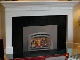 31 dvi gas fireplace insert gas fireplace insert