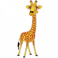 the giraffe essay essay on giraffe for school students  the giraffe essay in english