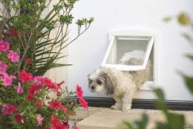install a pet door australian