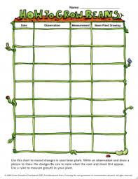 Green Bean Growth Chart Bean Plant Growth Recording Sheet Growing Green Beans