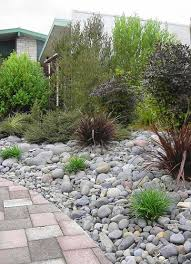 Small Picture Landscaping With New Zealand Native Plants Bark path through the