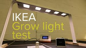 Ikea Grow Light Test Youll Be Surprised